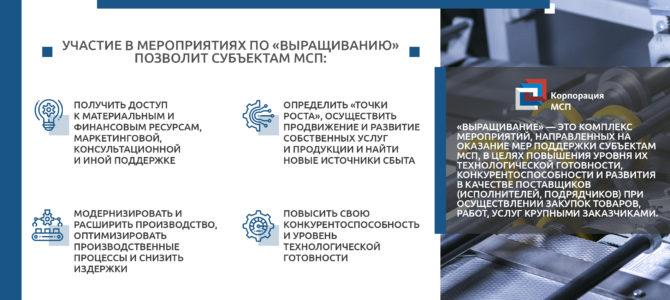 Прием заявок по проекту «выращивание» субъектов МСП